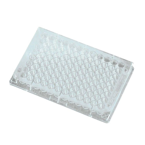 NuncTM 249944 V96 MicroWell 96 Well X 300uL Assay Microplate Without Lid And V Bottom Wells Non Treated Natural Polypropylene Sterile Case Of 120