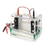 Electrophoresis Systems & Products