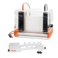Thermo Scientific Owl® Vertical Electrophoresis Systems